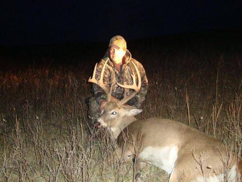 Deer 11 31