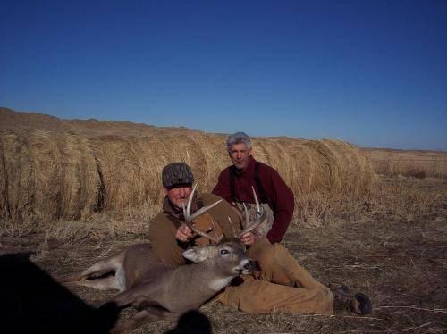Deer 11 43